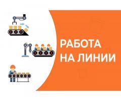 Комплектовщик-упаковщик Вахта в Москве(м/ж)